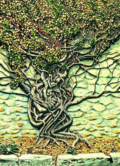 The-Tree-of-my-SorrowSmall